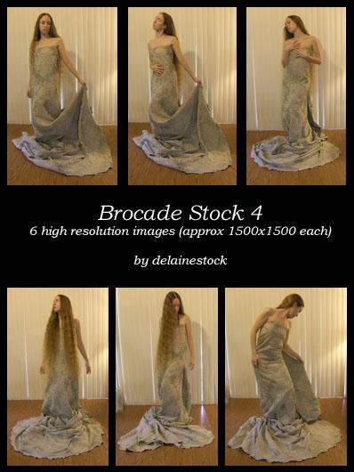 Brocade Dress Pack 4 by delainestock