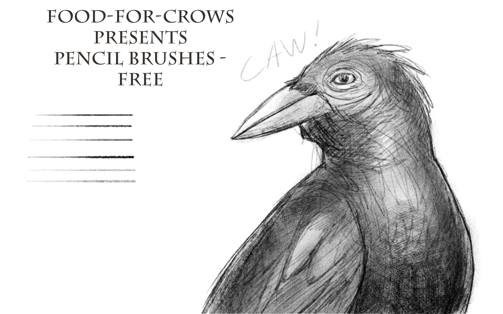 Pencil brushes free by food for crows