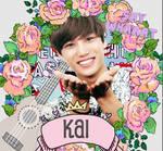 +ID Kai Gif / Tumblr Style