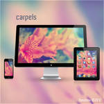 Carpels