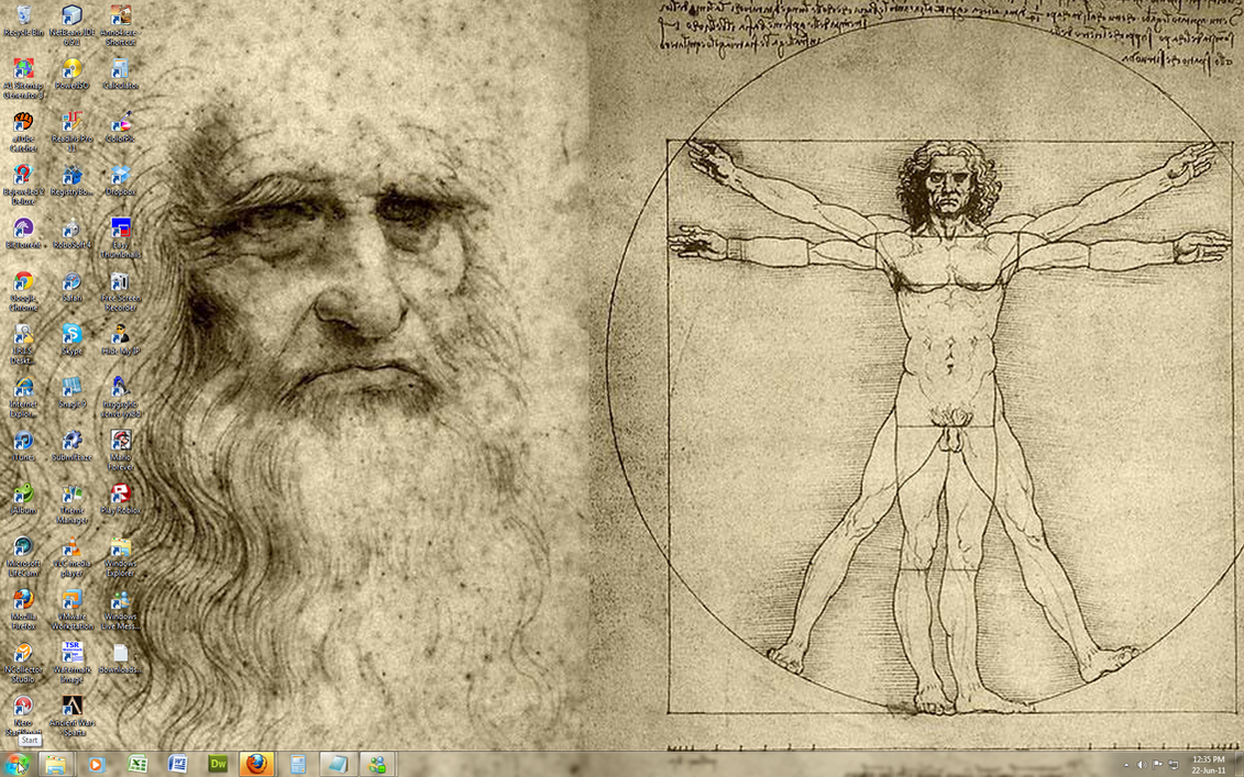 Leonardo da Vinci -Win 7 Theme by Windowsthememanager