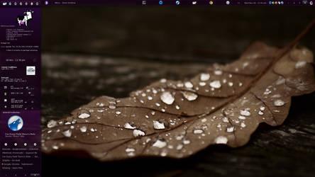 gentooViolet by violet-tina