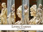 Living.Garden.Pack