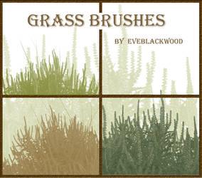 grass plant brushes