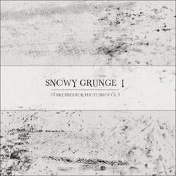 Snowy Grunge I