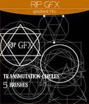 Transmutation Circle Brushes