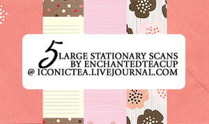 5 Large Stationary Scans