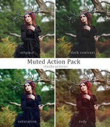 Muted Action Pack by StacheActions