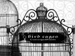 Bird cages ConvergedPixels