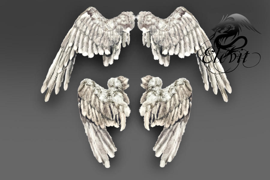 E-S Wings by Elevit-Stock