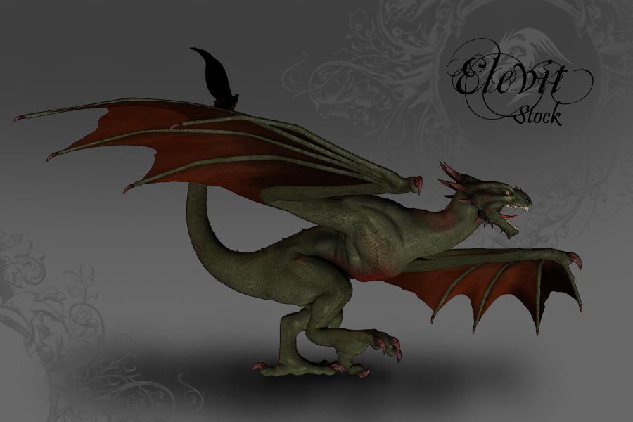 E-S Dragon Wyvern by Elevit-Stock