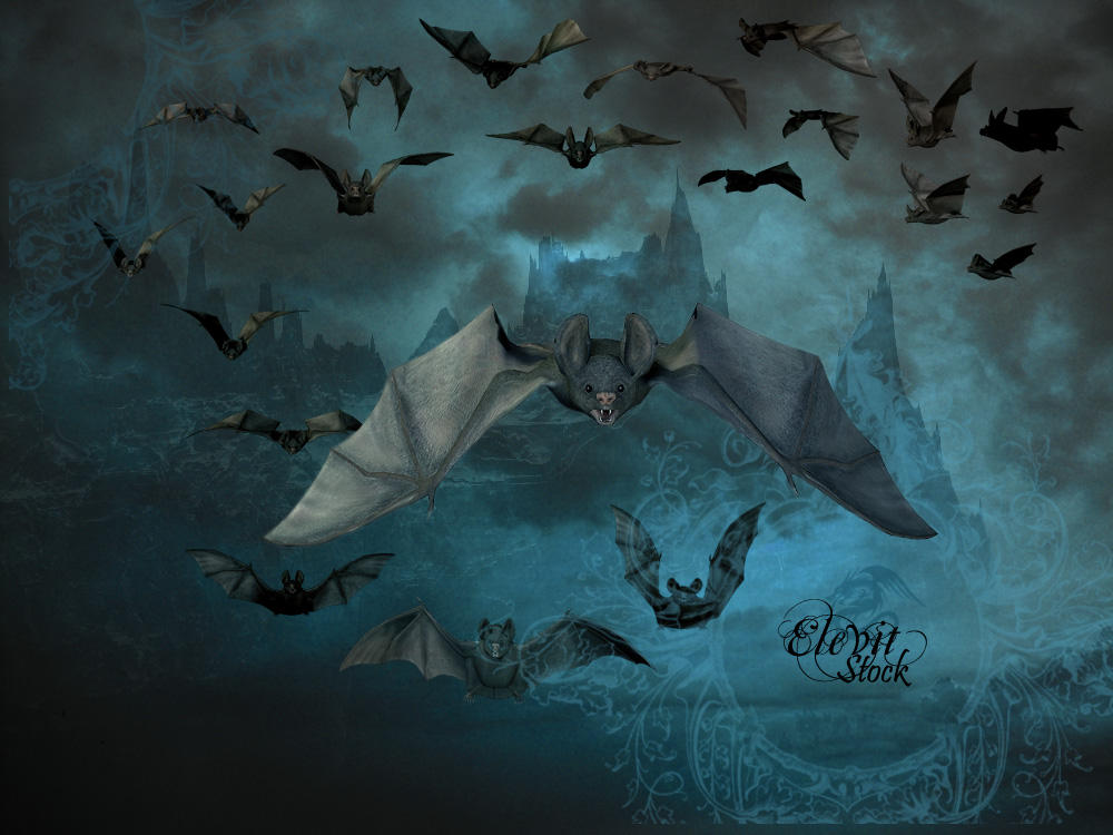 E-S Bats pack by Elevit-Stock