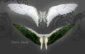 E-S Wings III by Elevit-Stock