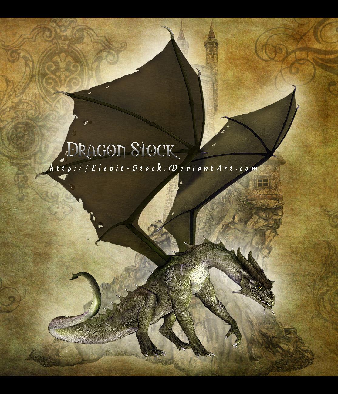 E-S Green Dragon I by Elevit-Stock