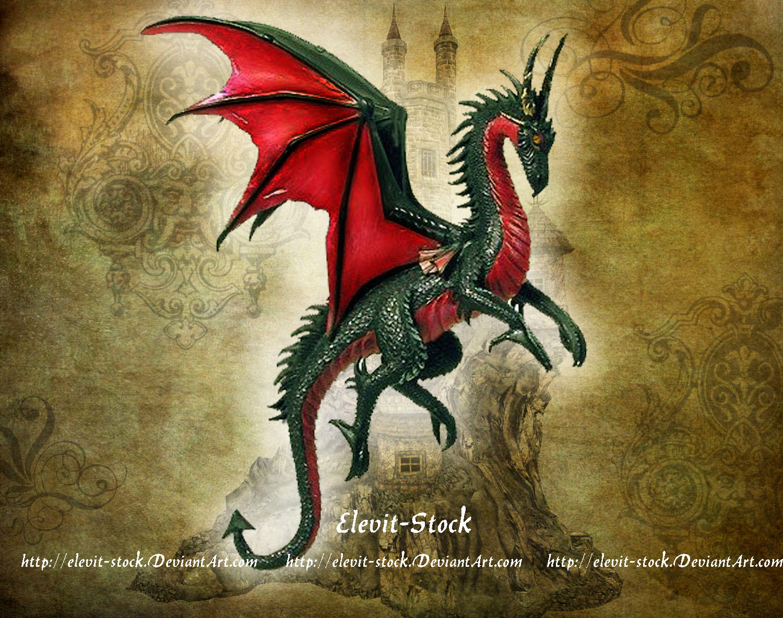 E-S Dragon III by Elevit-Stock