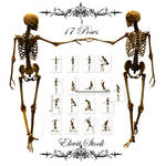E-S Bones I