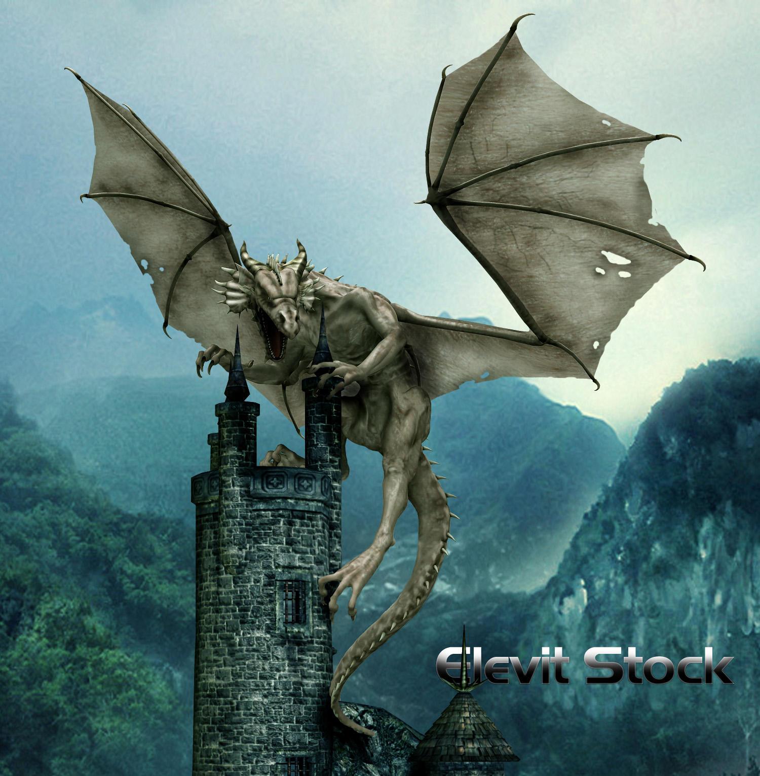 E-S Dragon 33 by Elevit-Stock