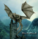 E-S Dragon 33