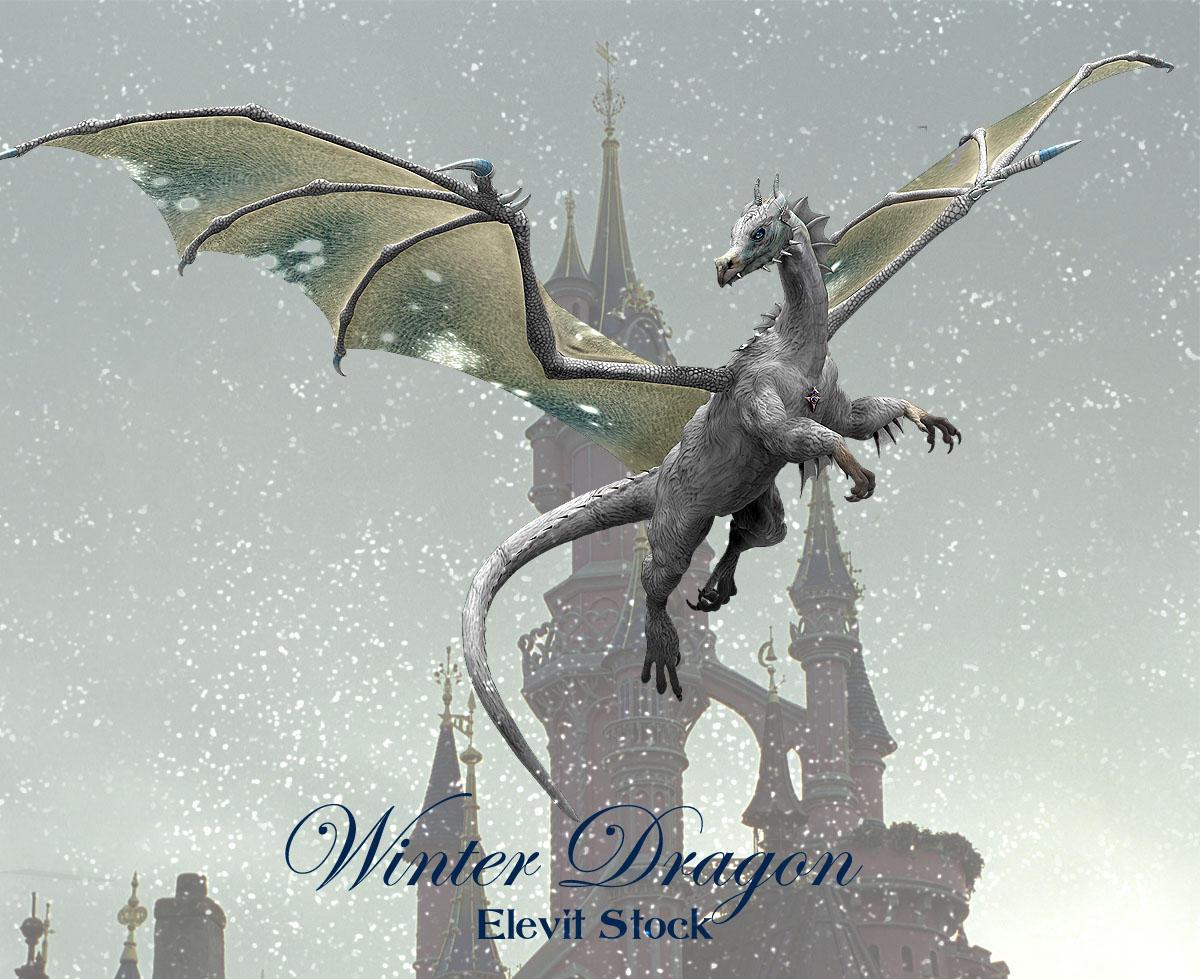 E-S Winter Dragon by Elevit-Stock