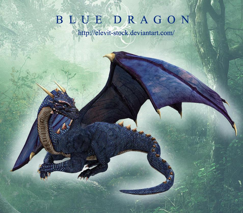 E-S Blue Dragon by Elevit-Stock