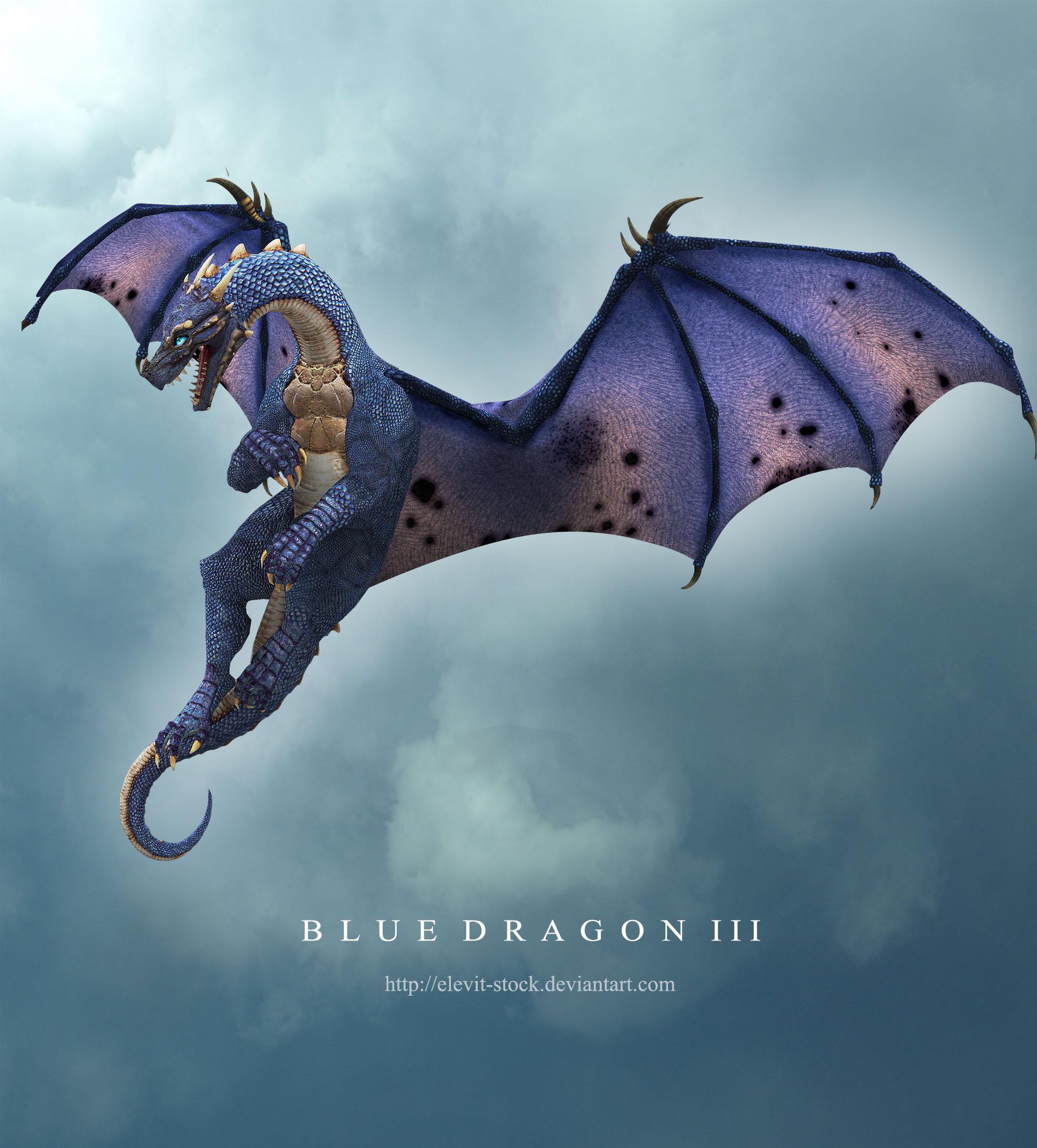 Blue Dragon III by Elevit-Stock