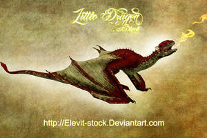 E-S Little Dragon by Elevit-Stock