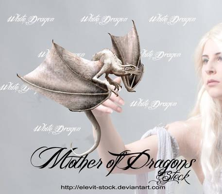 E-S White little dragon