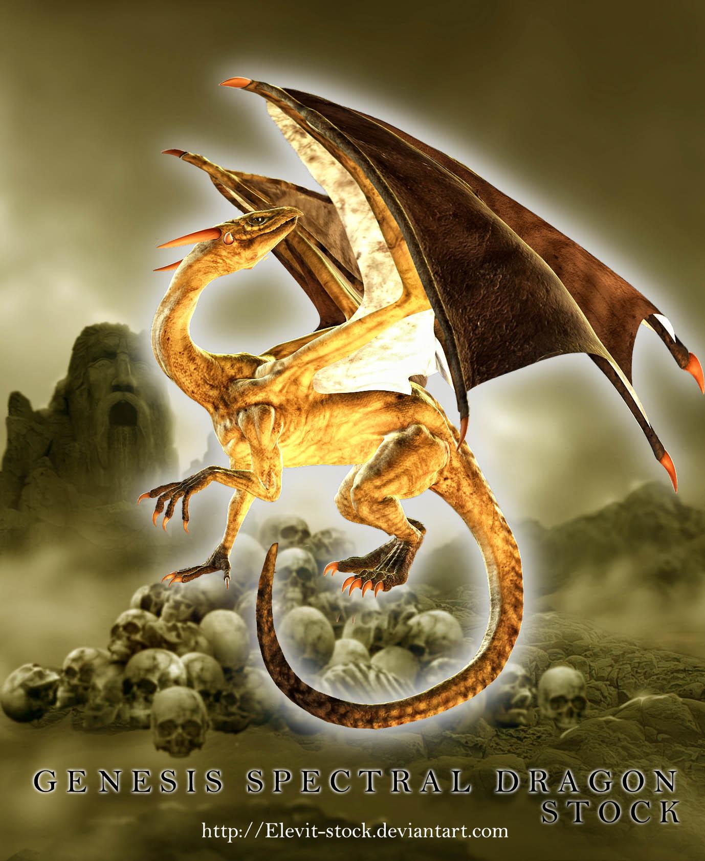E-S Genesis Spectral Dragon by Elevit-Stock