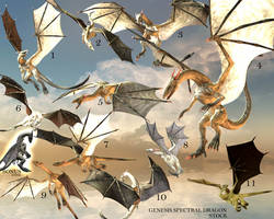 E-S genesis Spectral Dragon 11 flaying poses by Elevit-Stock