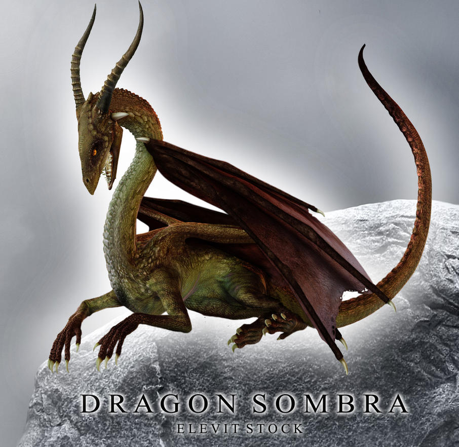 E-S Dragon sombra by Elevit-Stock