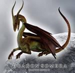 E-S Dragon sombra