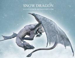 E-S Snow Dragon by Elevit-Stock