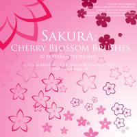 Sakura: Cherry Blossom Brushes by differentxdreamz