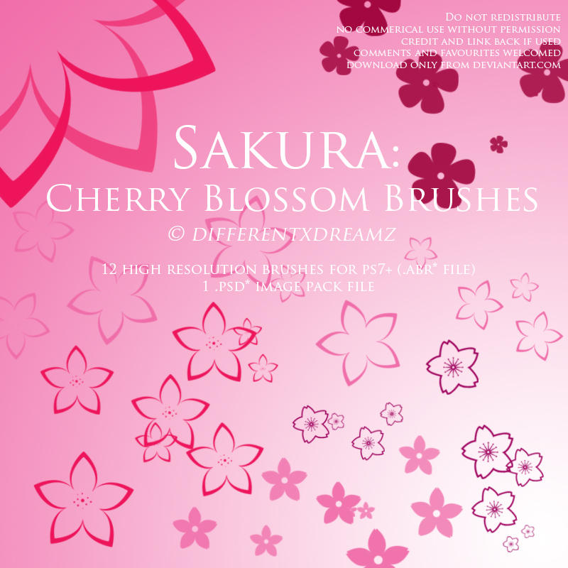 Sakura: Cherry Blossom Brushes by differentxdreamz