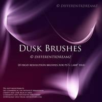 Dusk Brushes by differentxdreamz