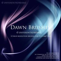Dawn Brushes by differentxdreamz