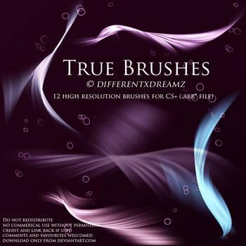 True Brushes by differentxdreamz