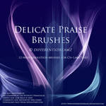 Delicate Praise Brushes by differentxdreamz