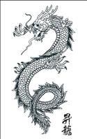 Japanese Dragon Vector Art by SamuraiAgency