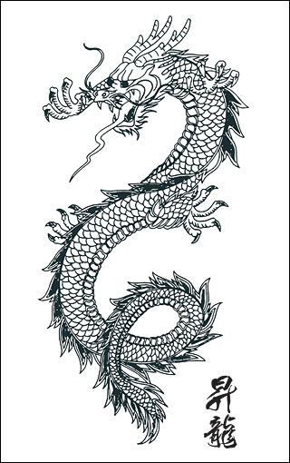 Japanese Dragon Vector Art by SamuraiAgency