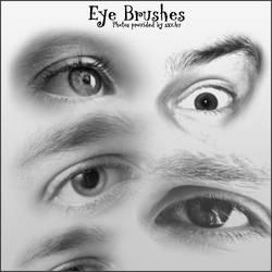 8 Eye Brushes