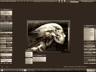 Image Browser - Preview by serVI