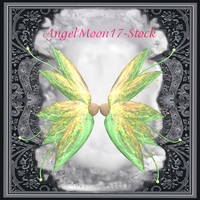 angelmoon17-stock28 by AngelMoon17