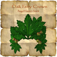 Oak Fairy Crown by AngelMoon17