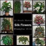 Silk Plants by TammySue