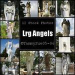 Lrg Angel by TammySue