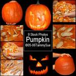 Pumpkin by TammySue