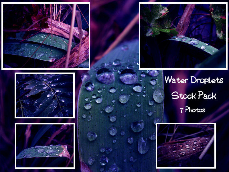 Water Droplets Stock Pack by sophia-T