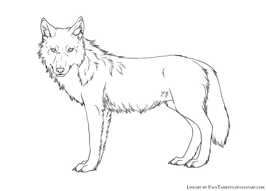 Line Drawing Wolf Face : Wolf lineart by khalliys on deviantart