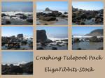 Crashing Tidepool Pack